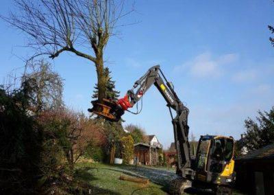 Baumarbeiten Garten und Landschaftsbau Winnen