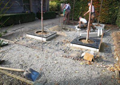 Pflanzung Garten und Landschaftsbau Winnen